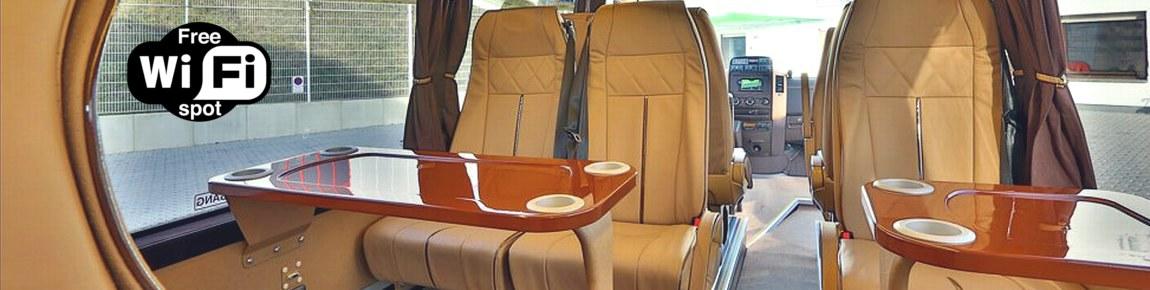 VIP Mini Bus Frankfurt